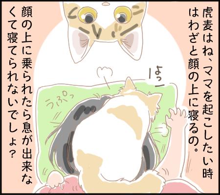 うん◯仲間2