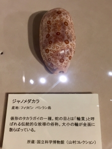 ニッポン貝人列伝-12