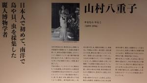 ニッポン貝人列伝-11