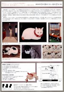 招き猫亭コレクション 猫まみれ-9