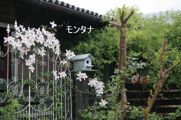 IMG_8279.jpg