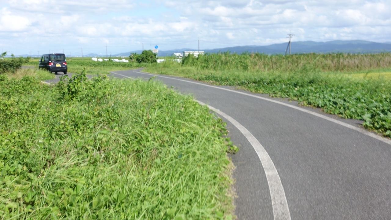 170902出雲大社10.JPG