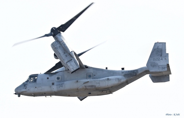 C-2129.jpg