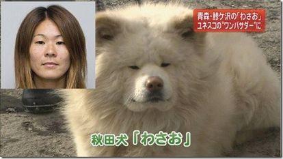澤穂希(サッカー選手)×秋田犬
