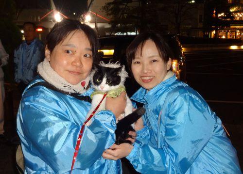こんの先生と猫ボラさん 500