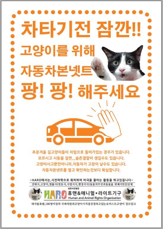韓国語版 猫バンバン 2018年4月12日 550