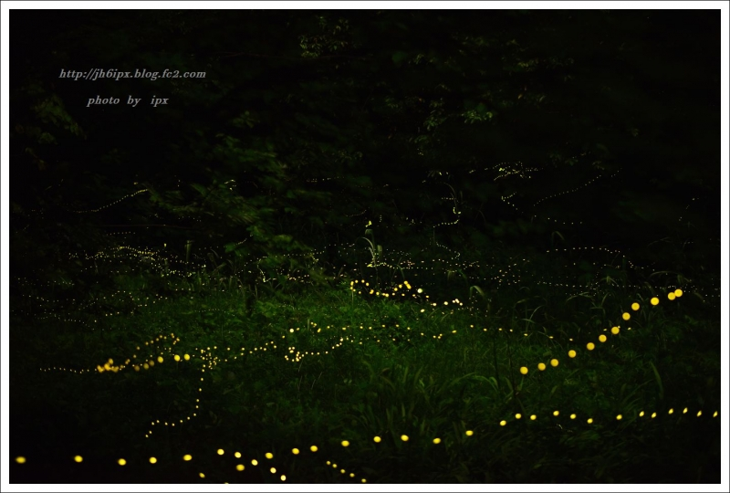 姫の里山(blog)
