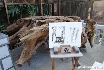 天沼熊野神社(杉並区天沼)13