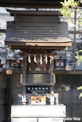天沼熊野神社(杉並区天沼)16