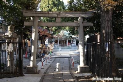 荻窪白山神社(杉並区上荻)7