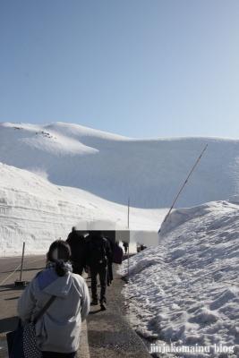雪の大谷6