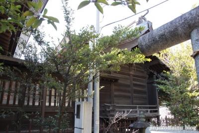 中井御霊神社(新宿区中井)9