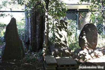 中井御霊神社(新宿区中井)11