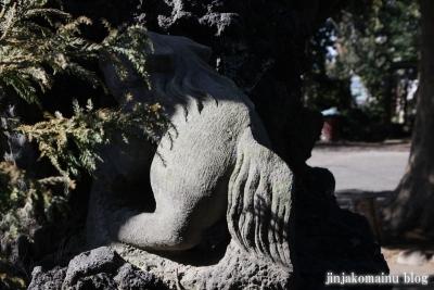 中井御霊神社(新宿区中井)29
