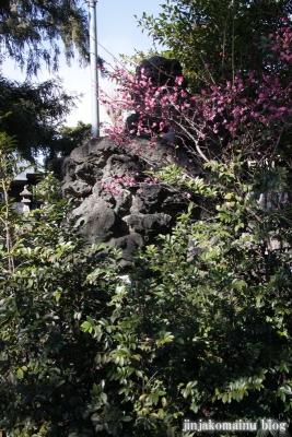 中井御霊神社(新宿区中井)19