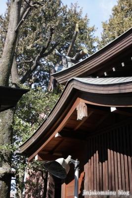月見岡八幡宮(新宿区上落合)8
