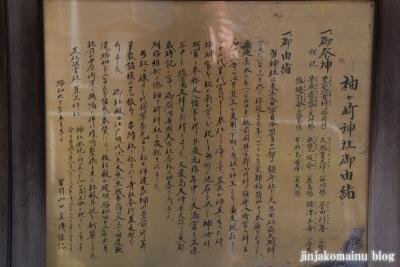 袖ケ崎神社(品川区東五反田)5