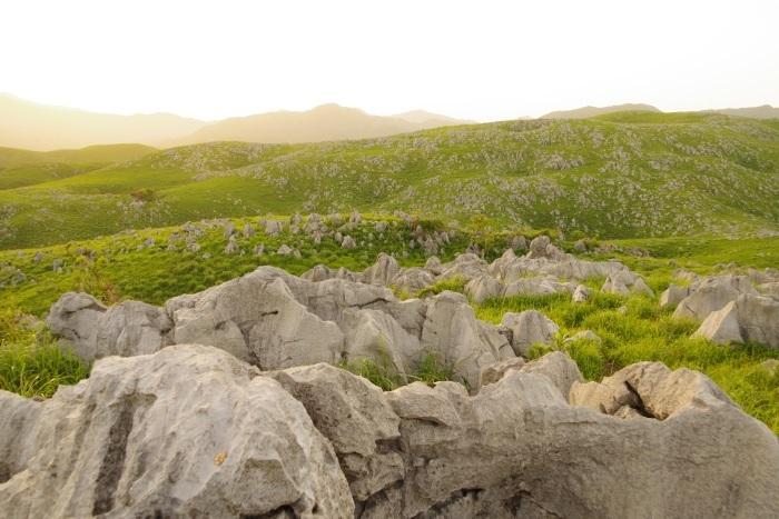 石灰岩ウェーブ