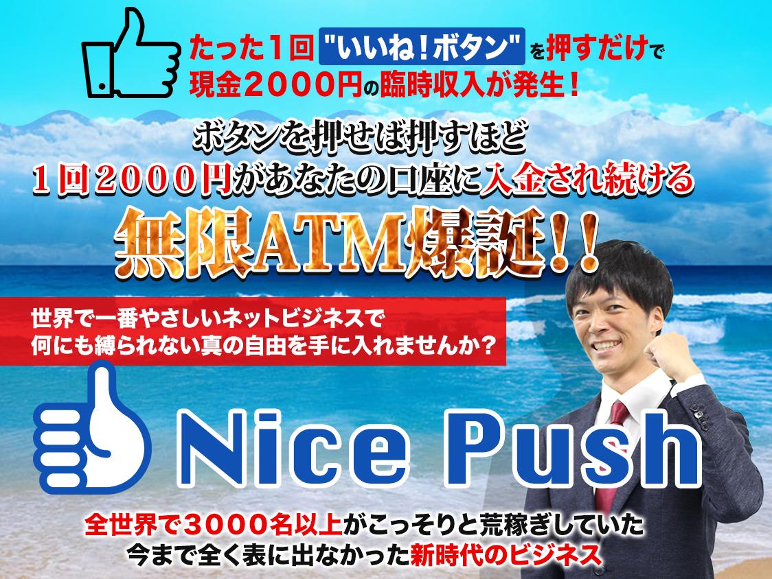 Nice Push LP