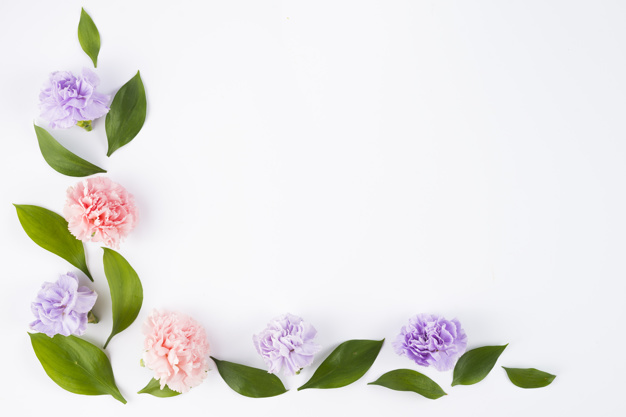 beautiful-angle-with-flowers-and-leafs_23-2147829561.jpg