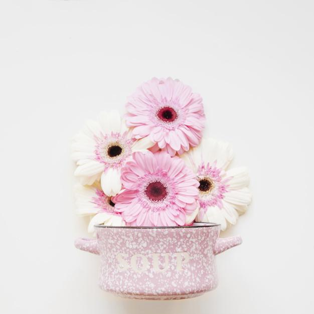 beautiful-pink-flowers_23-2147766463.jpg