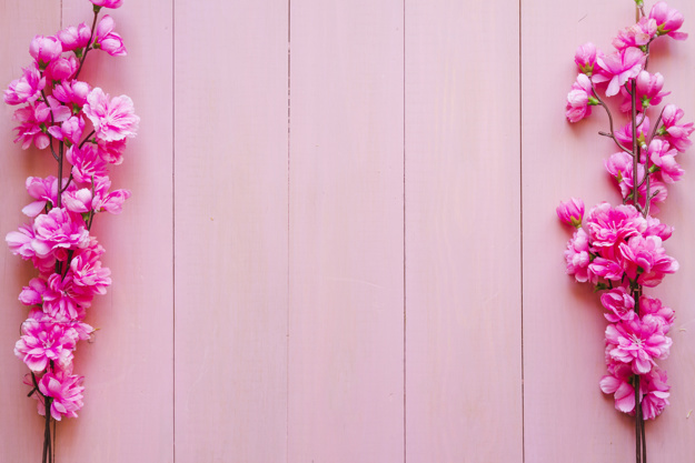 blooming-twigs-on-pink-background_23-2147766516.jpg
