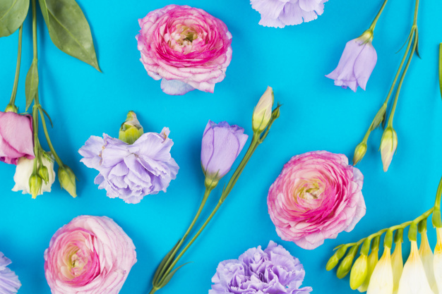cute-flowers-on-colorful-background_23-2147829586.jpg