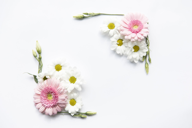 daisies-and-buds-composition_23-2147804465.jpg