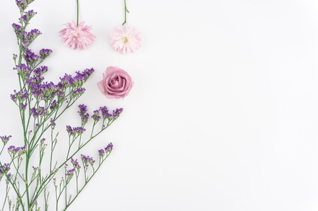 floral-composition-on-white-background_23-2147601190.jpg