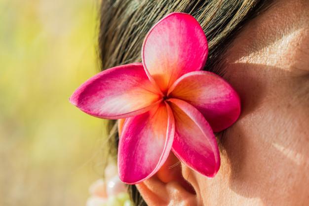 pink-frangipani-flowers-tuck-ear-women_38228-75.jpg