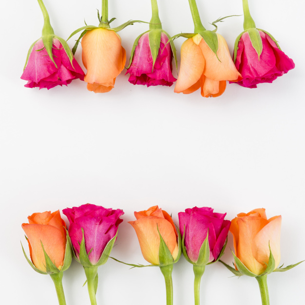 spring-background-with-roses_23-2147822496.jpg
