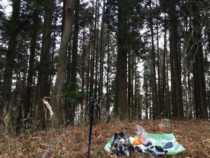 2018鴻野山/林