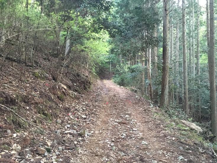 2018岩尾峰櫃ヶ嶽/林道4