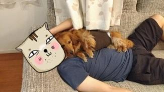パパと犬太郎