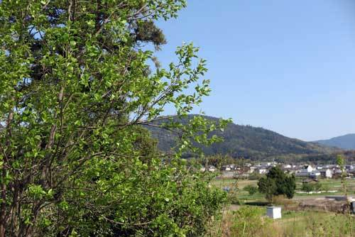 180413三輪山