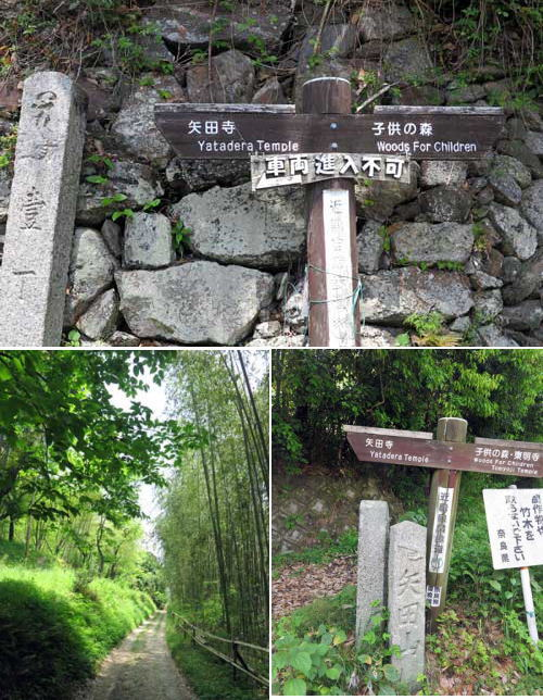 180501矢田寺へ