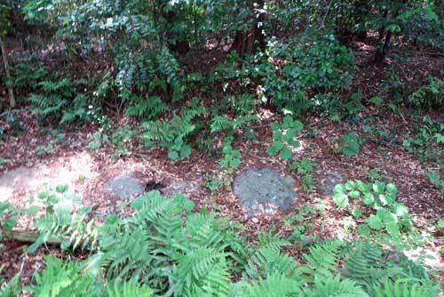 180517メスリ山天井石
