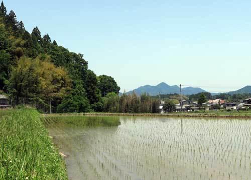 180515額井岳