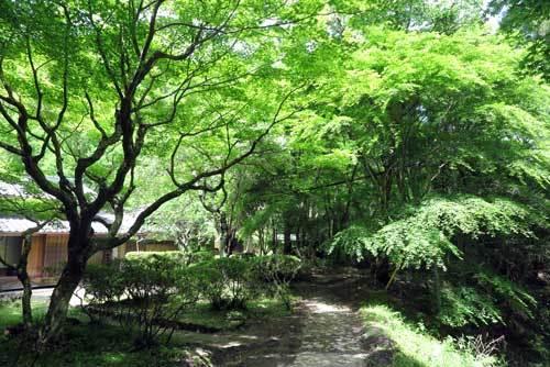 180515徳源寺
