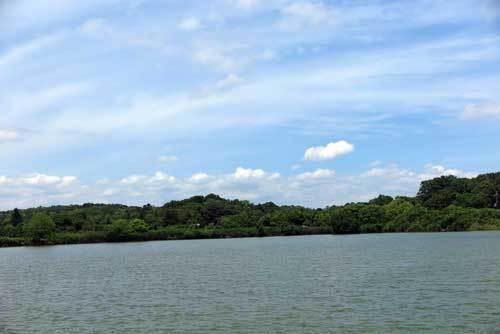 180616水上池