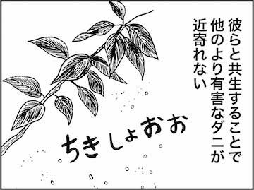 kfc01216-5