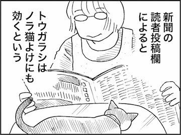 kfc01232-5