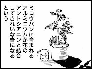 kfc01240-4