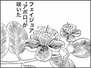 kfc01255-1