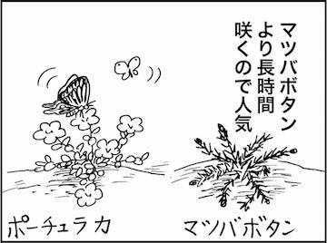 kfc01258-3