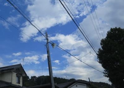 長野県南佐久辺り街灯