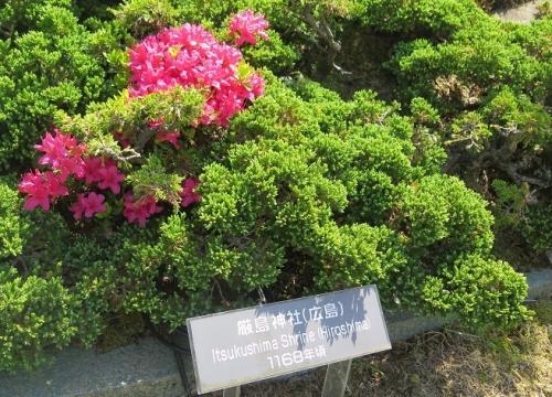 東武ワールドスクウェア《広島》厳島神社