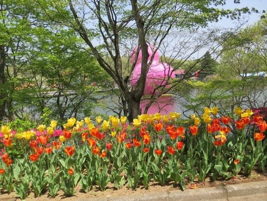 りんどう湖 巨大ピンクアヒル