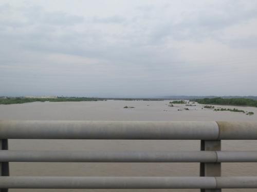 濁流の天竜川