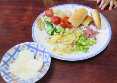 マゴラのお昼ご飯